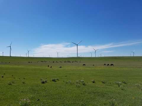 原野电力风车光景图片