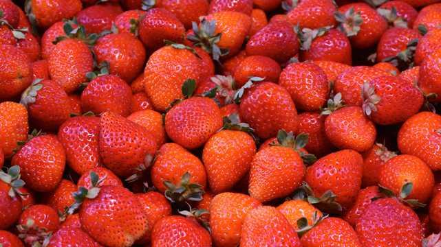 酸甜绯红的草莓图片
