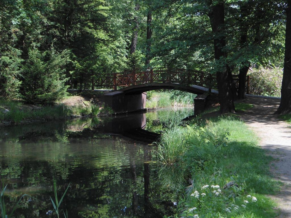 自然, 河, 绿色, 水, 桥梁, 公园, 步行
