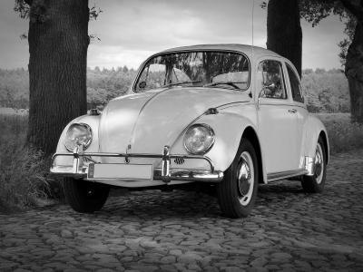 大众汽车, 甲虫, 而作, 经典, 鹅卵石, 老, 哈比