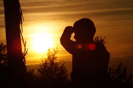 日落, 爱, 和平, 幸福, 光, 太阳, 路径
