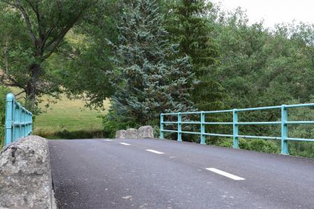 桥梁, 道路, 栅栏, 绿色, 森林