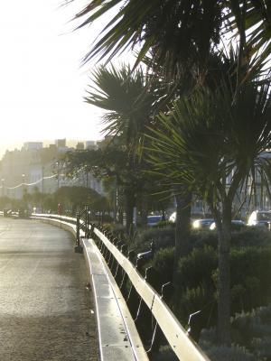 长廊, 海边的城市, 公园的长椅上, 假日, 棕榈, 回光, 威尔士
