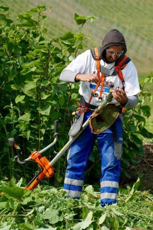 杂草, 男子, 工作服, mulcher, 手工劳动, 斯平德勒, 工作