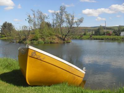 小船, 渔船, 自然, 尼斯湖, 苏格兰