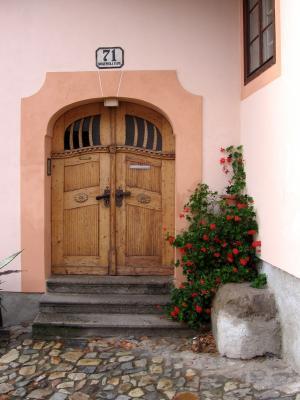 门, 目标, 家门口, 旧门, 木材, 前门, 输入