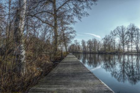 人权法 》, 桥梁, 水, 湖, hdr, 镜像, 树
