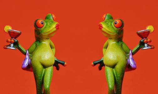青蛙, 小鸡, 女士们, 傲慢, 鸡尾酒, 有趣, 青蛙