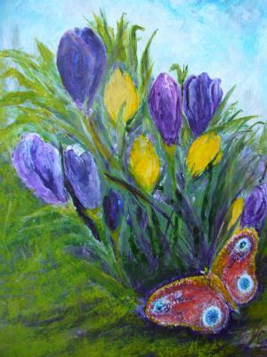春天的迹象, 雪莲, 蝴蝶, 多色, 自然, 花, 蓝色