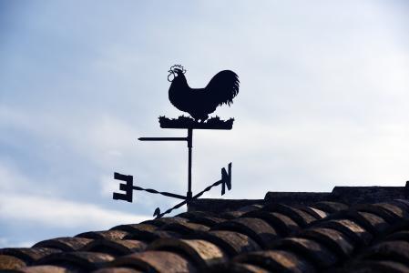 方向, wearthercock, 天气风向标, 风, 风指示器, 风向标