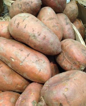 蔬菜, 红薯, 菜园, 市场