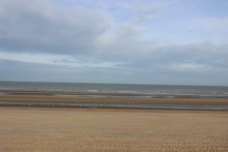 海, 海滩, 地平线