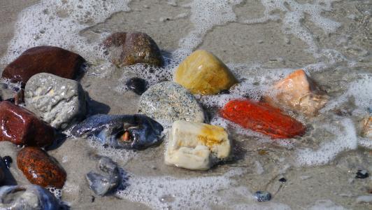 石头, 多彩, 海滩, 结构, 颜色, 水, 海岸