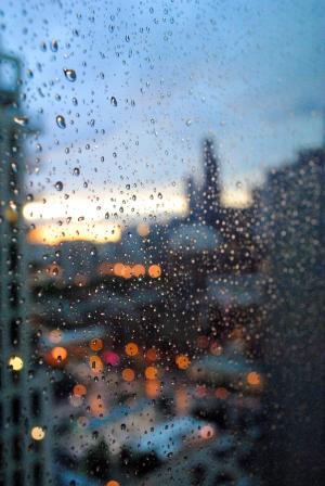 芝加哥, 雨, 威利斯大厦, 西尔斯大厦, 水, 风暴, 城市