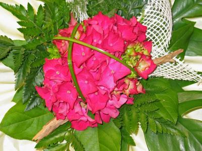 花束, 生日, 绣球花, schnittblume, 粉色, 绿色, 植物