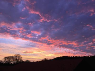 日出, 天空, 云彩, 景观, 树木, 冬天, 野餐