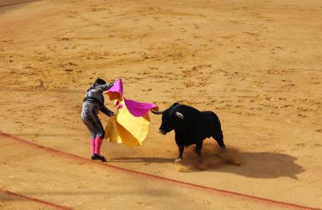 塞维利亚, 公牛战斗, 公牛