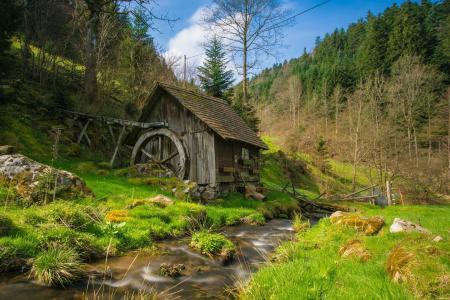 磨机, 黑色的森林, 巴赫, 水, 森林, 景观, 树木