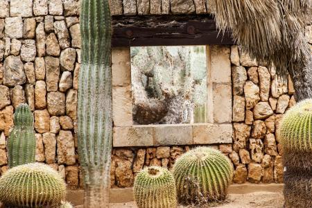 墙, 窗口, 仙人掌, 通过查看, 地中海, 文化