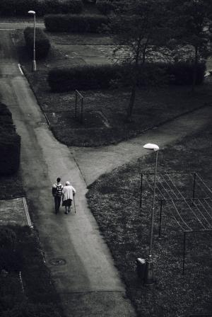 年龄, 奶奶, 孙子, 保健, 公园, 步行, 灯具