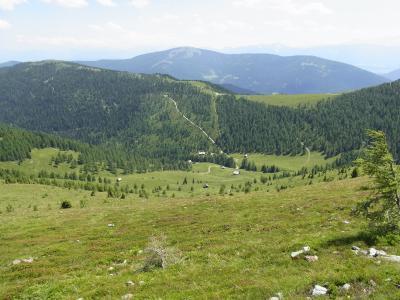 山脉, 草甸, 山, 字段, 高山的花, 视图, 天空