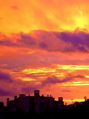 火热, 天空, 日落, 迈阿密, 佛罗里达州, 热带, 费舍尔岛
