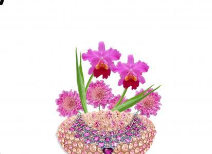 安排, 花香, orquideas, 粉色, 粘贴