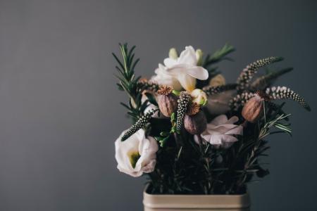 花, 核心, 安排, 装饰, 装饰, 花香, 花店