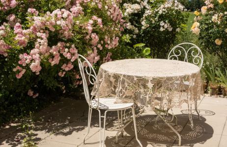 表, 夏季, 玫瑰, 露台, 椅子, 花, 太阳