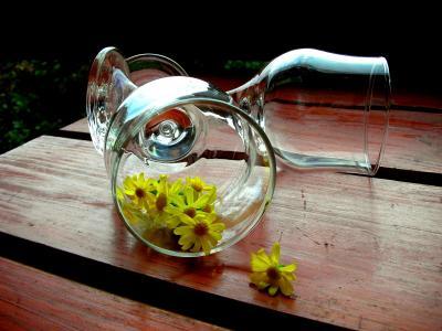 酒杯, 洋甘菊, 黄色的花, 木桌