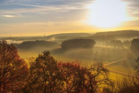 日出, 走了, 景观, morgenrot, 自然, 树木, 道路
