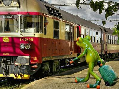 青蛙, 告别, 旅行, 有趣, 火车站, 乐趣, 走开