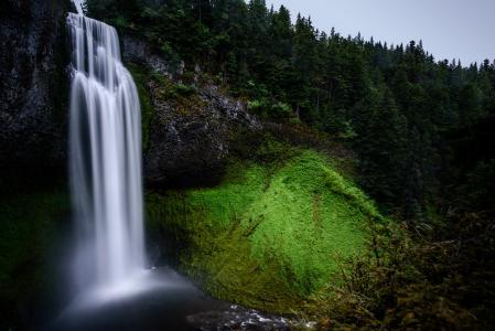 森林, 景观, 青苔, 山, 自然, 户外, 风景名胜