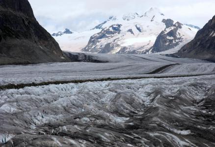 冰川, 阿莱奇, 景观, 山, 高山, 雪, 阿尔卑斯山