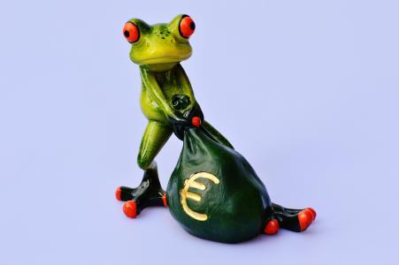 青蛙, 钱, 欧元, 袋, 钱袋子, 有趣, 可爱
