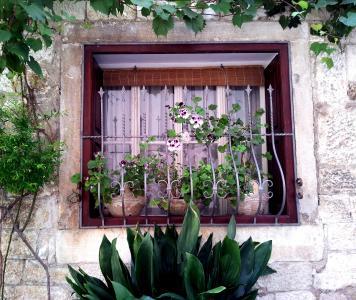 窗口, 花, 王菲, 房子, 植物, 花园, 绿色