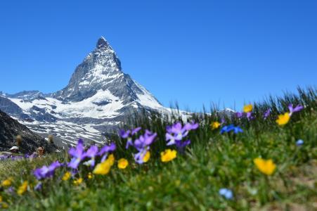 马特宏峰, 高山, 采尔马特, 山脉, 戈尔内格拉特, 瓦莱州, 瑞士