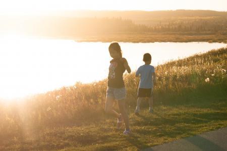 孩子们, 戏剧, 湖滨区, 日落, 秋天, 黎明, 快乐