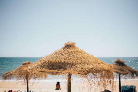 青草海滩树荫