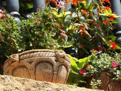 花, 中午, 阳台, 老鹳草, 石头, 壶, 装饰
