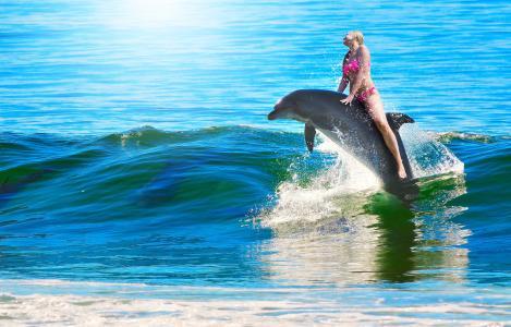 女人, 海豚, 骑, 游泳, 妇女骑马海豚, 波, 跳转