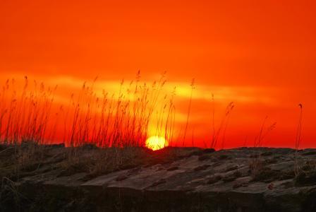 太阳, 余辉, morgenrot, 日出, 日落, abendstimmung, 明亮的红色