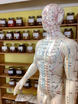 针灸, 草药, 替代, 顺势疗法, 中文, 健康, 治疗