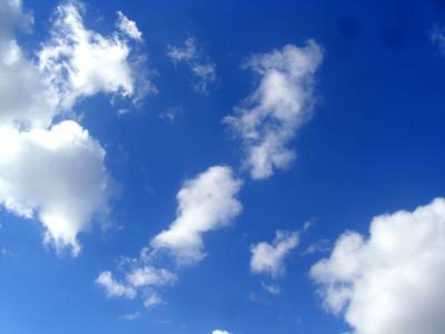 自然, 白色, 天空, 天气, 颜色, 高, 光