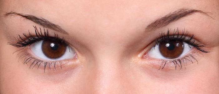 美丽, 特写, 眼睛, 眉毛, 睫毛, 眼睛, 女性