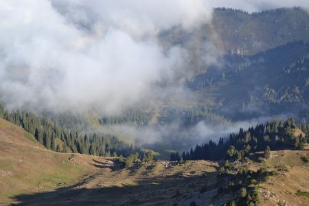 哈萨克斯坦, 旅行, 山脉, 沉默, 景观, 雾