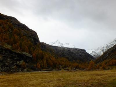 意大利, 奥斯谷, 奥斯塔, 大天堂, 国家公园, 秋天, 雾