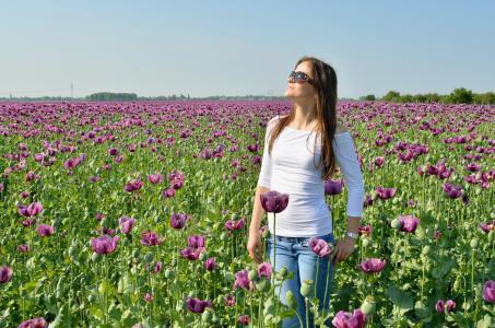 罂粟, 字段, 年轻的女人, 阳光, 女孩, 花, 自然