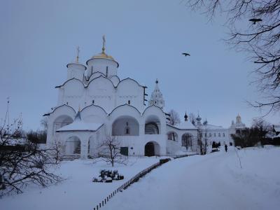 苏兹达尔, 冬天, 寺, 教会, 雪, 圆顶, 俄罗斯