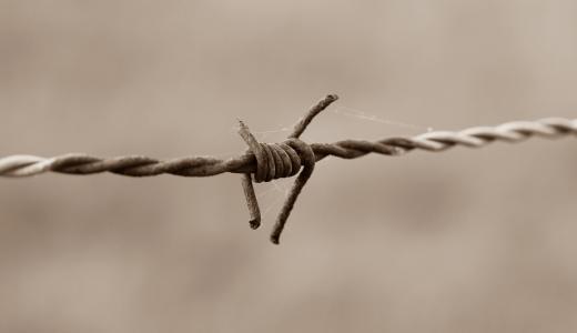 铁丝网, 带刺的铁丝网, 栅栏, 老, 金属, 黑色和白色, 生锈